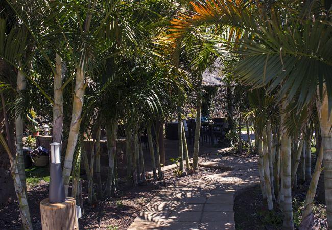 Casa en La Matanza de Acentejo - Casa,VISTA MAR, PISCINA CLIMATIZADA, Calefacción,  Terrazas Naciente y Poniente, Wifi gratis (9)