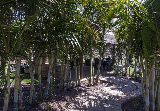 Apartamento en La Matanza de Acentejo - 2 dormitorios, Piscina Climatizada, Calefacción, Wifi gratis, Jardín y barbacoa privados (4)