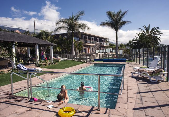Apartamento en La Matanza de Acentejo - Vista lateral mar, PISCINA CLIMATIZADA, CALEFACCIÓN, Gran Terraza, Wifi gratis  (7)